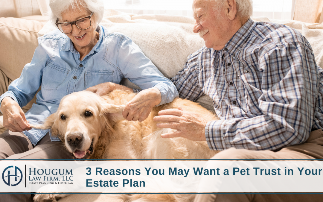Three Reasons You May Want a Pet Trust in Your Estate Plan
